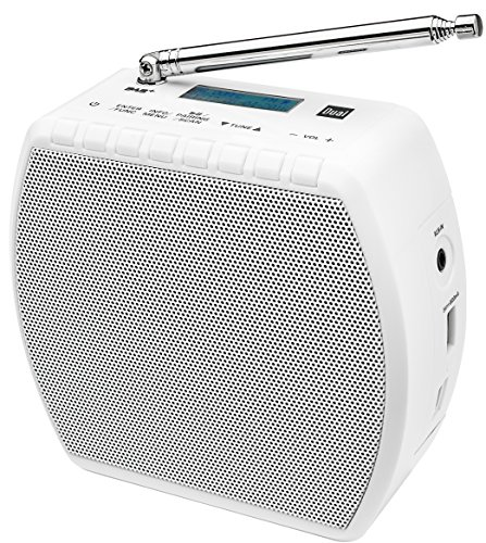 Dual DAB STR 100 Digitalradio
